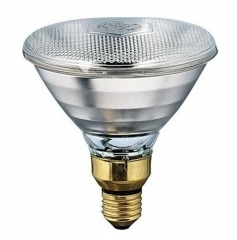 Philips InfraRed Heat Lamp Light PAR38 E27 230V 100W Clear